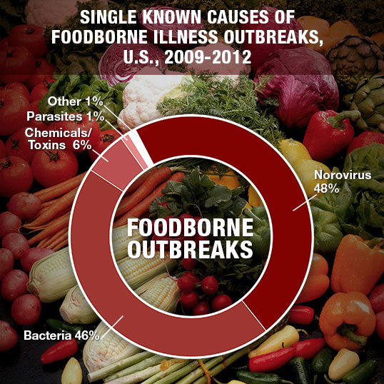 Graph of Causes for Foodborne Illness Outbreaks
