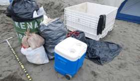 Due to the high beach use in July, trash is a big problem. Put trash in designated cans and dumpsters, or pack it out
